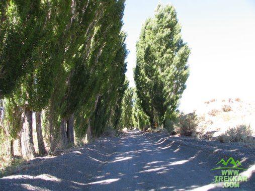 """Camino de ingreso al parque nacional """"El Leoncito""""."""