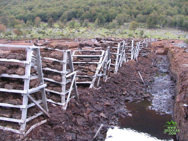 Turbera: Producción de turba