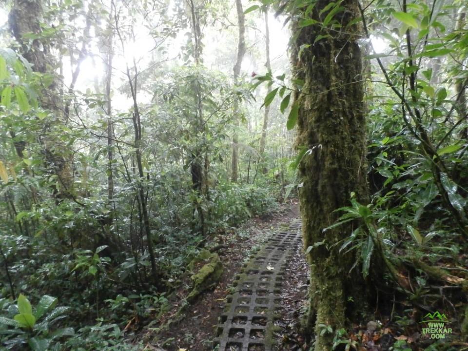 Honda El Monte >> Parques Nacionales en Costa Rica - Trekkar.com