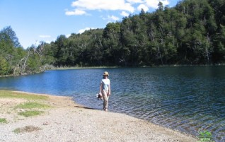 P.N. Alerces – Sendero a Laguna Escondida