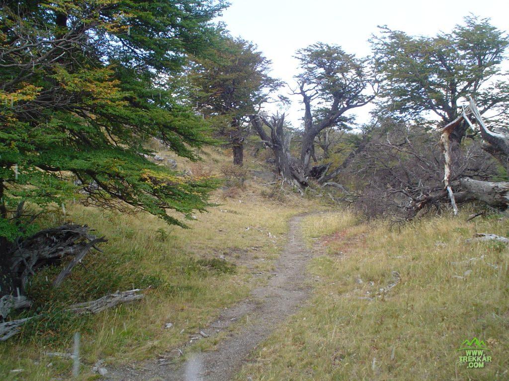 Trail to Piedra del Fraile